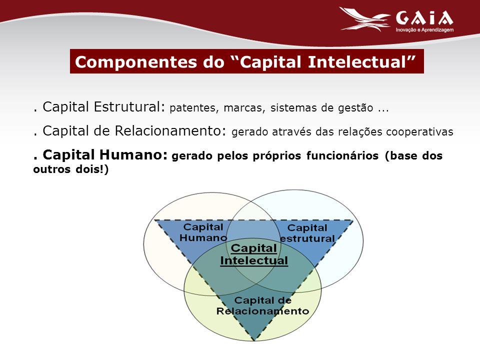 Capital Estrutural: patentes, marcas, sistemas de gestão....