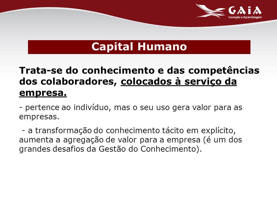 Capital Humano Trata-se do conhecimento e das competências dos colaboradores, colocados à serviço da empresa.