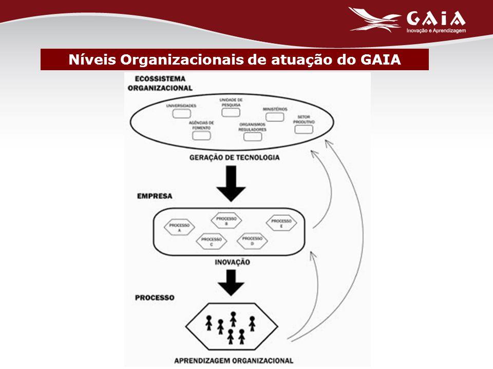 Níveis Organizacionais de atuação do GAIA