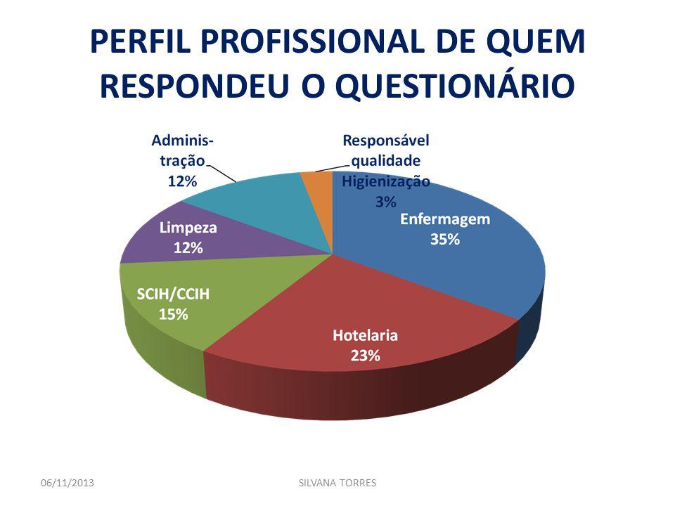 PERFIL PROFISSIONAL DE QUEM RESPONDEU O QUESTIONÁRIO 06/11/2013SILVANA TORRES