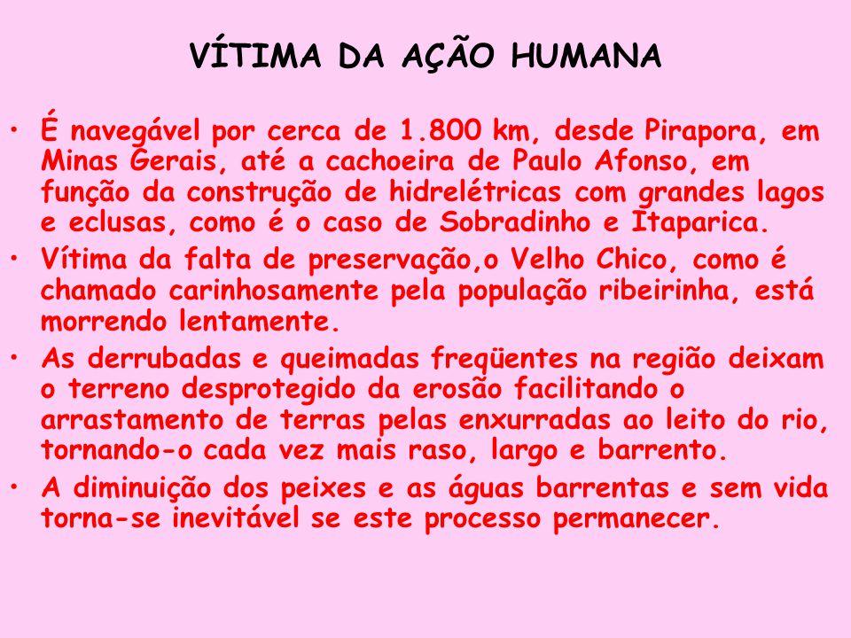 VÍTIMA DA AÇÃO HUMANA É navegável por cerca de 1.800 km, desde Pirapora, em Minas Gerais, até a cachoeira de Paulo Afonso, em função da construção de
