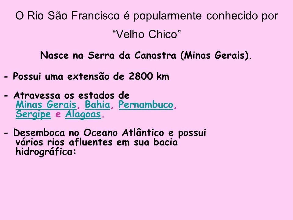 """O Rio São Francisco é popularmente conhecido por """"Velho Chico"""" Nasce na Serra da Canastra (Minas Gerais). - Possui uma extensão de 2800 km - Atravessa"""