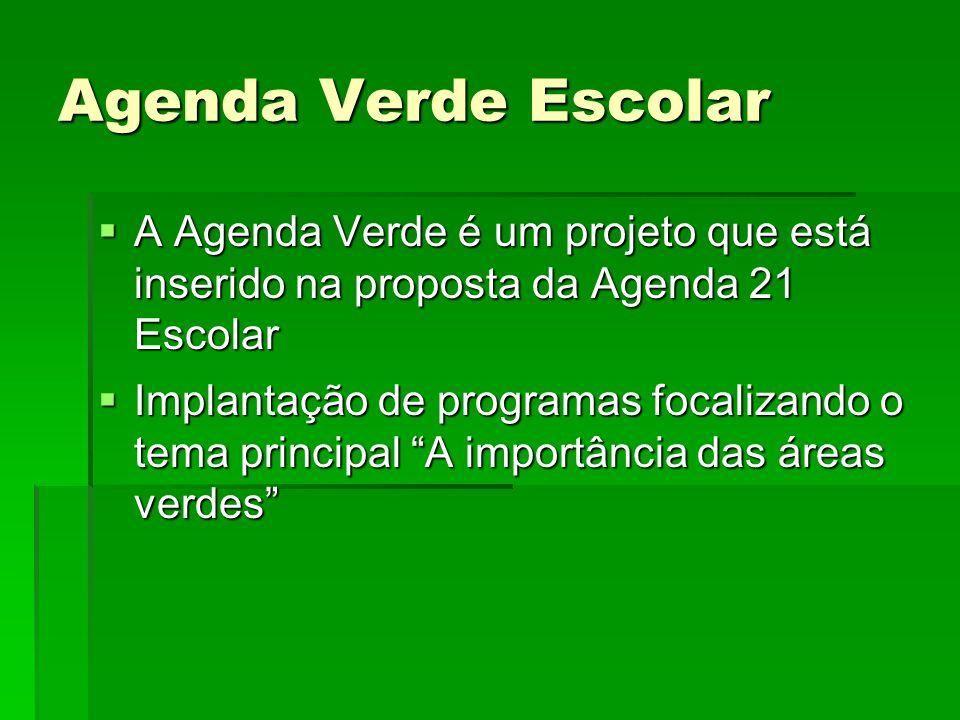 """ A Agenda Verde é um projeto que está inserido na proposta da Agenda 21 Escolar  Implantação de programas focalizando o tema principal """"A importânci"""