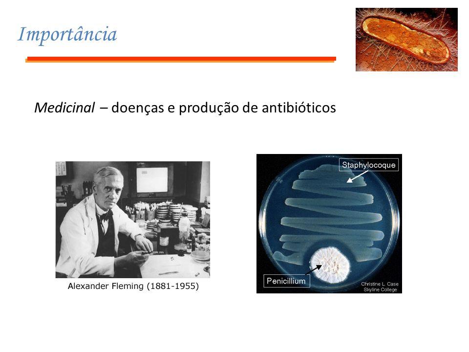 Importância Medicinal – doenças e produção de antibióticos