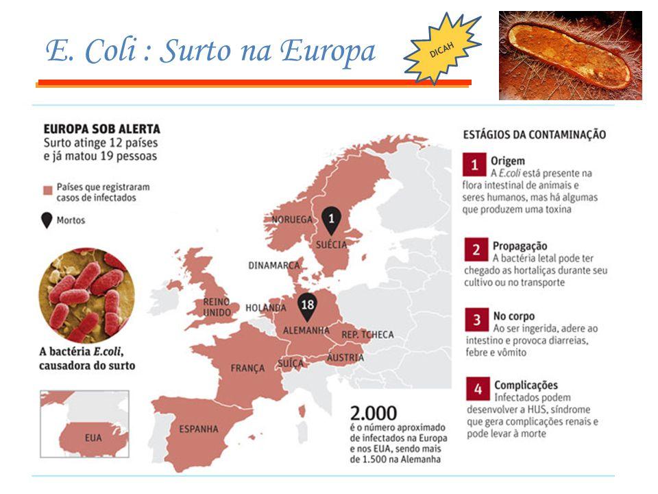 E. Coli : Surto na Europa DICAH
