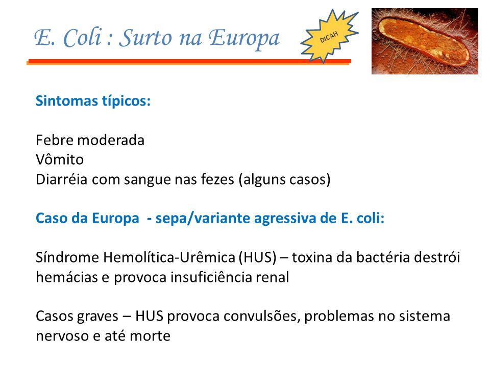 Sintomas típicos: Febre moderada Vômito Diarréia com sangue nas fezes (alguns casos) Caso da Europa - sepa/variante agressiva de E. coli: Síndrome Hem