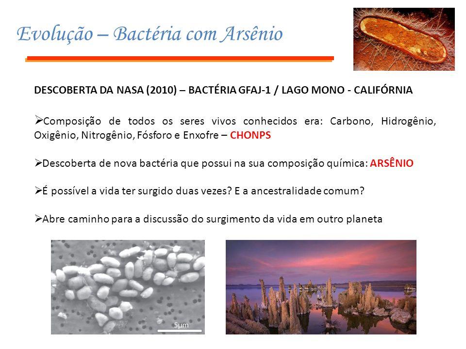 Evolução – Bactéria com Arsênio DESCOBERTA DA NASA (2010) – BACTÉRIA GFAJ-1 / LAGO MONO - CALIFÓRNIA  Composição de todos os seres vivos conhecidos e