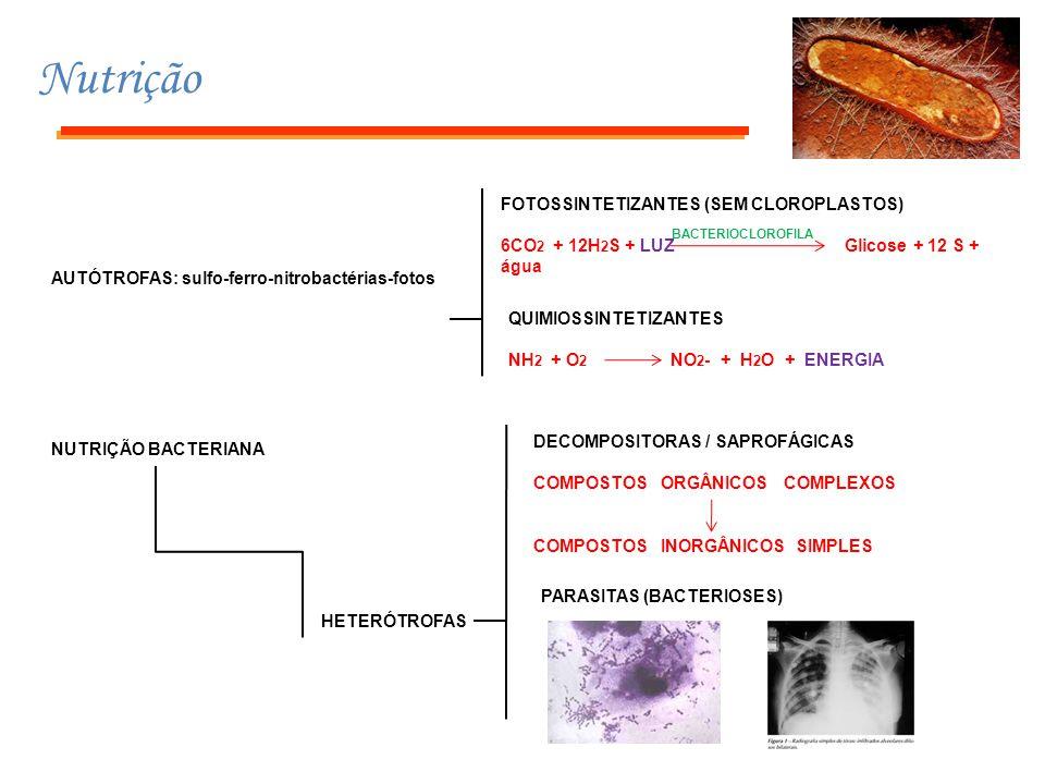 Nutrição NUTRIÇÃO BACTERIANA AUTÓTROFAS: sulfo-ferro-nitrobactérias-fotos HETERÓTROFAS FOTOSSINTETIZANTES (SEM CLOROPLASTOS) 6CO 2 + 12H 2 S + LUZ Gli