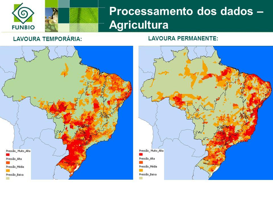 LAVOURA PERMANENTE: LAVOURA TEMPORÁRIA: Processamento dos dados – Agricultura