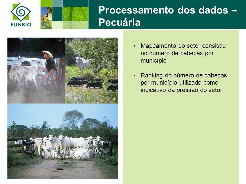 Processamento dos dados – Pecuária Mapeamento do setor consistiu no número de cabeças por município Ranking do número de cabeças por município utilizado como indicativo da pressão do setor