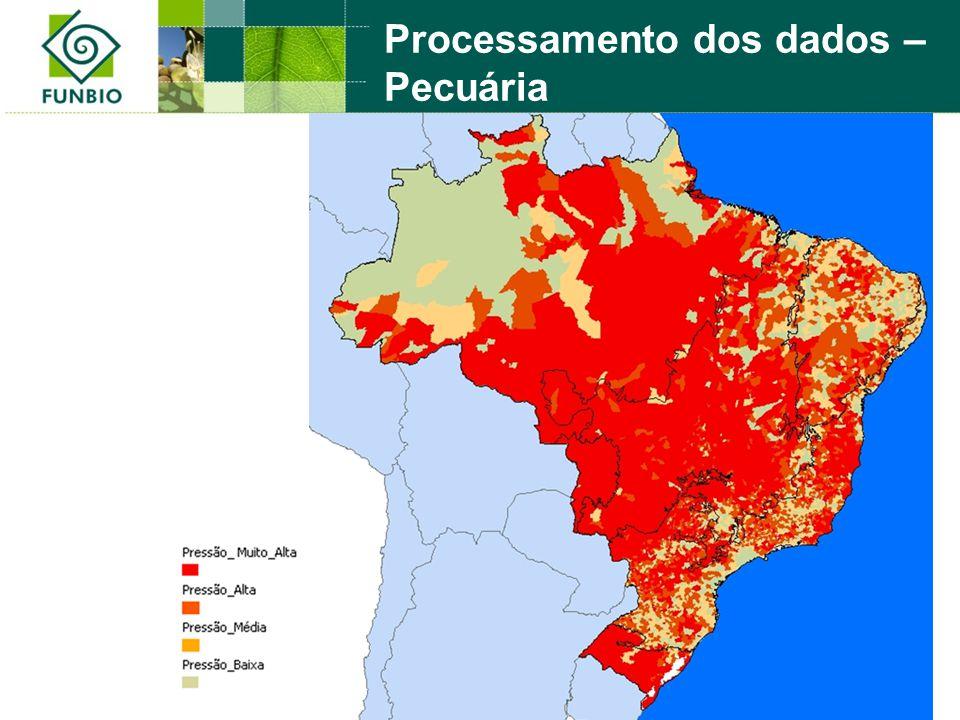 Processamento dos dados – Pecuária
