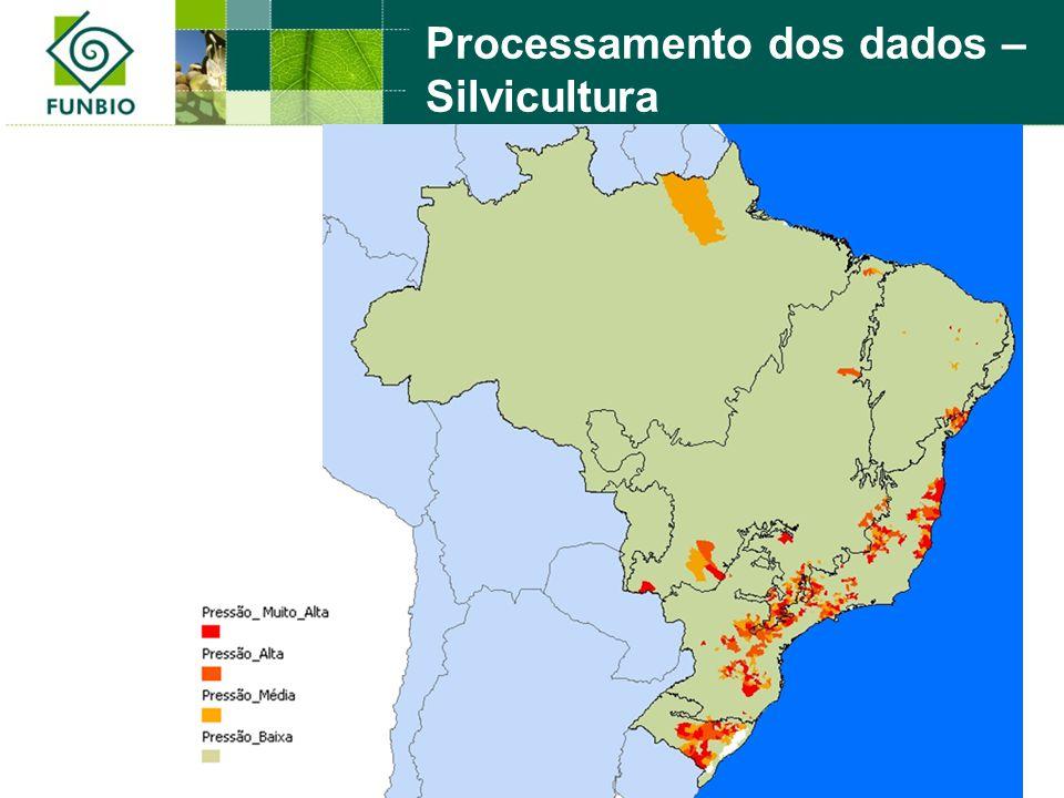 Processamento dos dados – Silvicultura