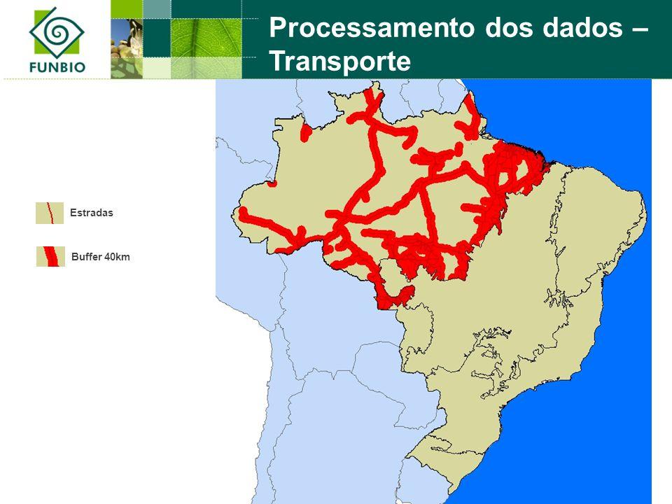 Processamento dos dados – Transporte Estradas Buffer 40km