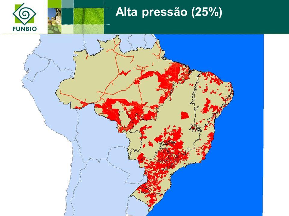 Alta pressão (25%)