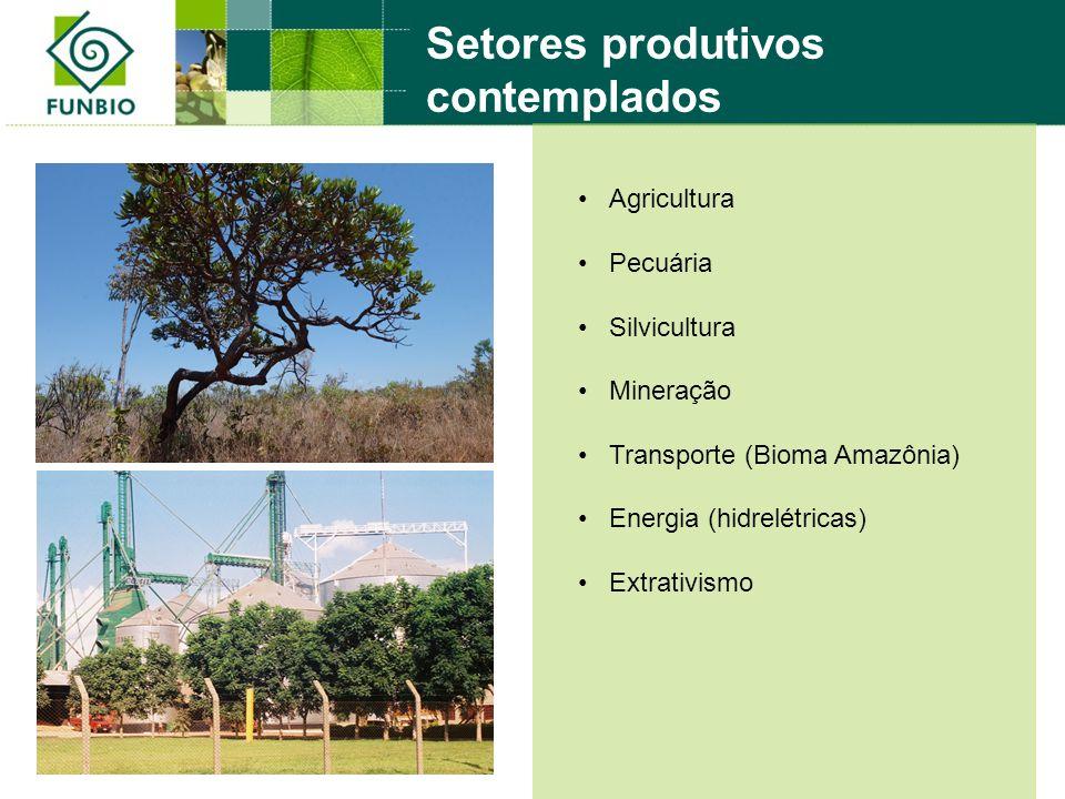 Agricultura Pecuária Silvicultura Mineração Transporte (Bioma Amazônia) Energia (hidrelétricas) Extrativismo Setores produtivos contemplados
