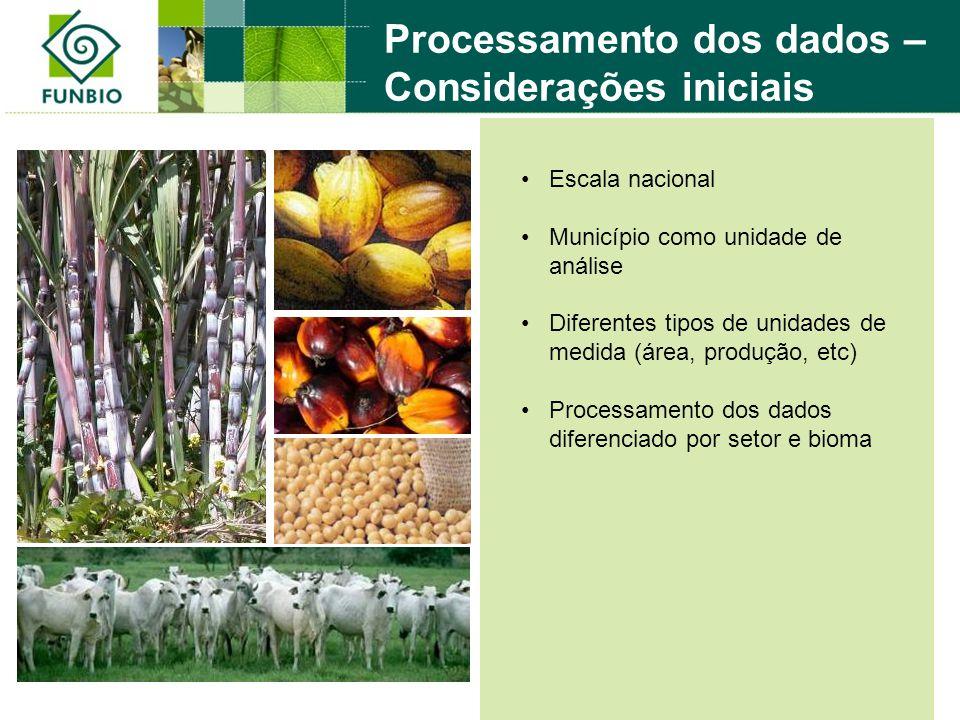 Processamento dos dados – Considerações iniciais Escala nacional Município como unidade de análise Diferentes tipos de unidades de medida (área, produção, etc) Processamento dos dados diferenciado por setor e bioma
