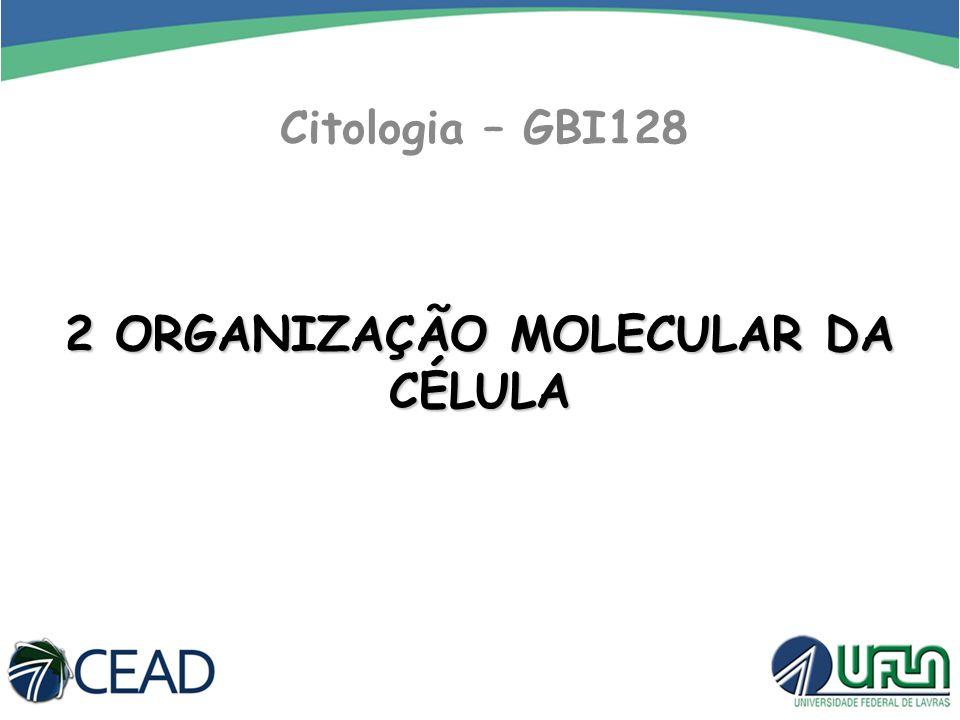 Citologia – GBI128 2 ORGANIZAÇÃO MOLECULAR DA CÉLULA