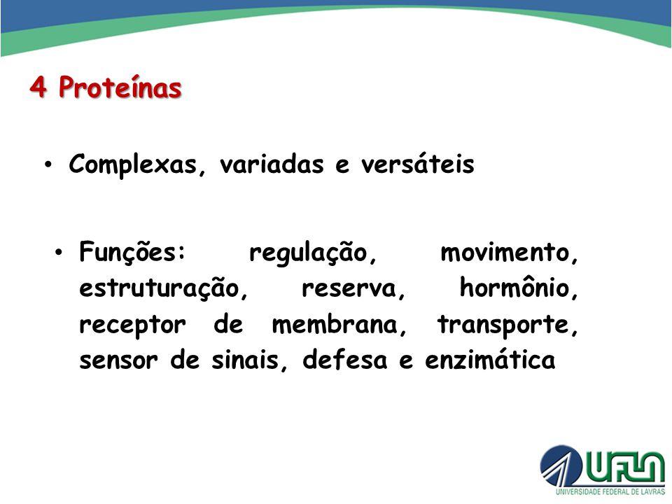 4 Proteínas Complexas, variadas e versáteis Funções: regulação, movimento, estruturação, reserva, hormônio, receptor de membrana, transporte, sensor d