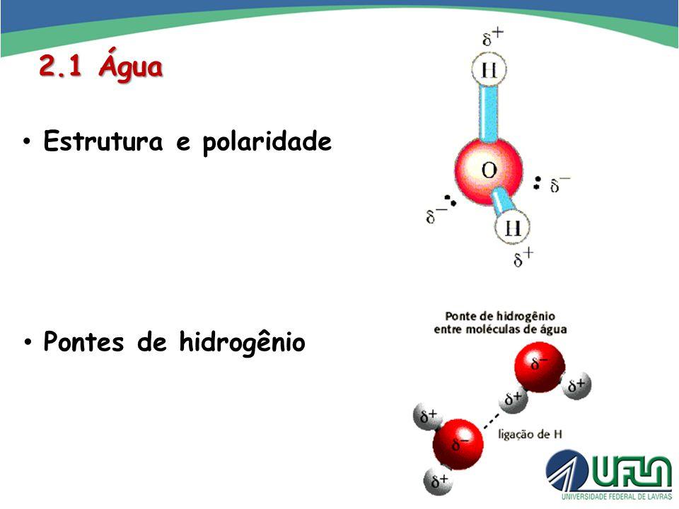 2.1 Água Estrutura e polaridade Pontes de hidrogênio