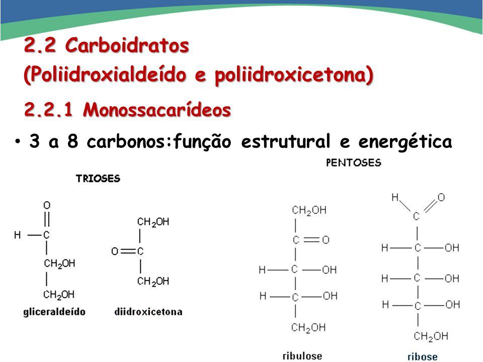 2.2 Carboidratos (Poliidroxialdeído e poliidroxicetona) 2.2.1 Monossacarídeos 2.2.1 Monossacarídeos 3 a 8 carbonos:função estrutural e energética