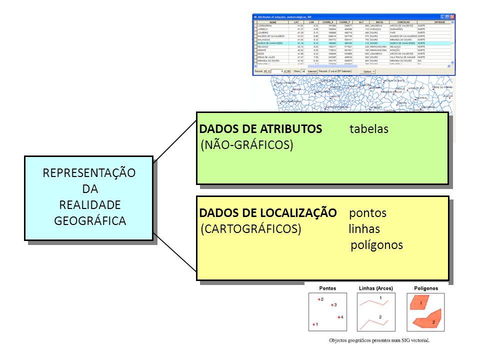 DADOS DE ATRIBUTOS tabelas (NÃO-GRÁFICOS) DADOS DE ATRIBUTOS tabelas (NÃO-GRÁFICOS) DADOS DE LOCALIZAÇÃO pontos (CARTOGRÁFICOS) linhas polígonos DADOS