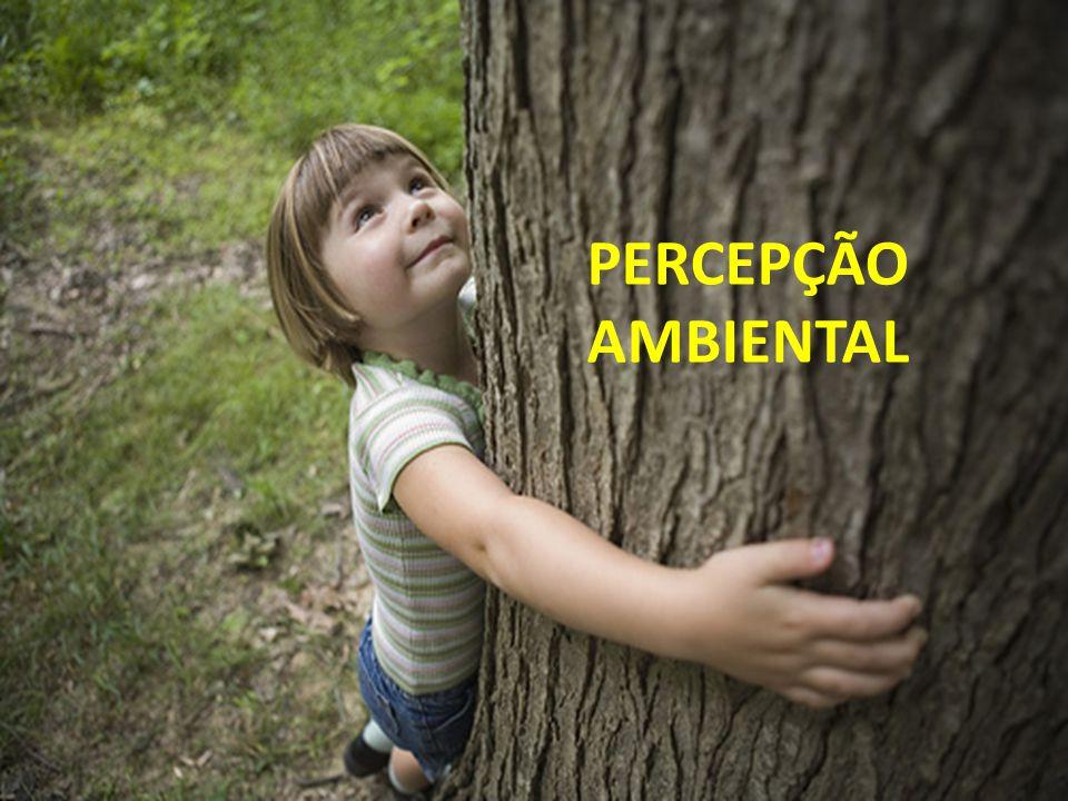 PERCEPÇÃO AMBIENTAL
