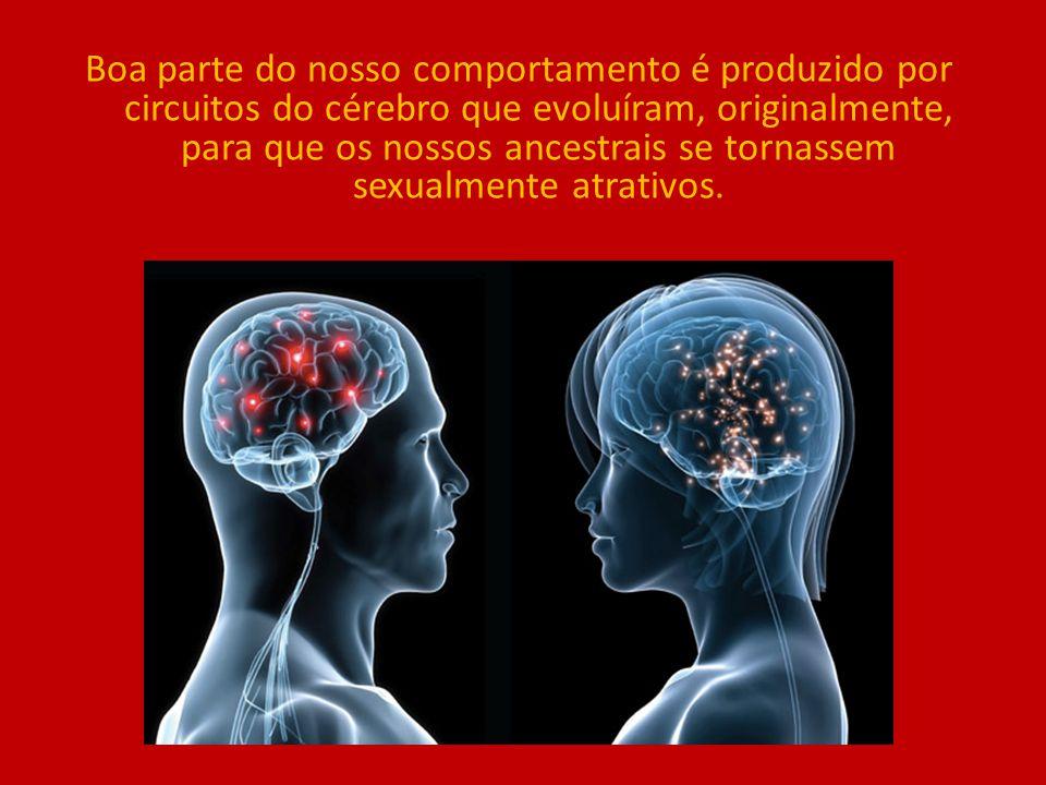 Boa parte do nosso comportamento é produzido por circuitos do cérebro que evoluíram, originalmente, para que os nossos ancestrais se tornassem sexualm