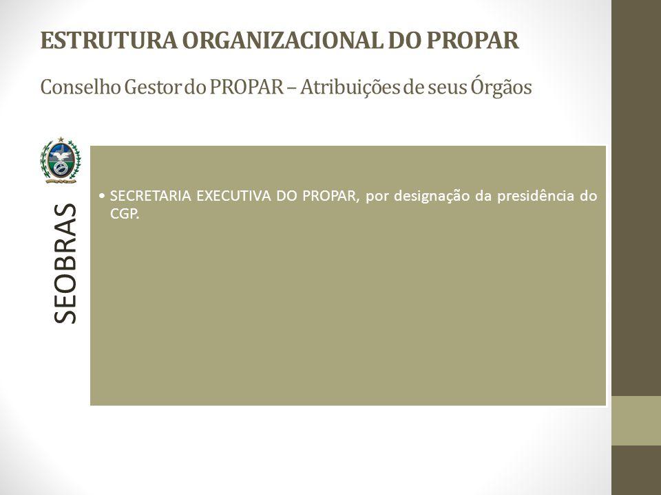 SEOBRAS SECRETARIA EXECUTIVA DO PROPAR, por designação da presidência do CGP.