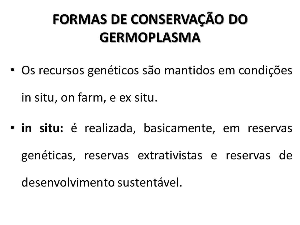 FORMAS DE CONSERVAÇÃO DO GERMOPLASMA Os recursos genéticos são mantidos em condições in situ, on farm, e ex situ. in situ: é realizada, basicamente, e