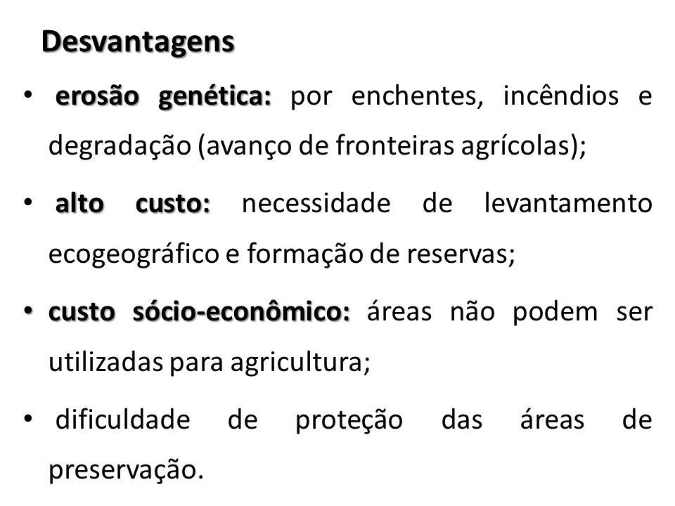 Desvantagens erosão genética: erosão genética: por enchentes, incêndios e degradação (avanço de fronteiras agrícolas); alto custo: alto custo: necessi