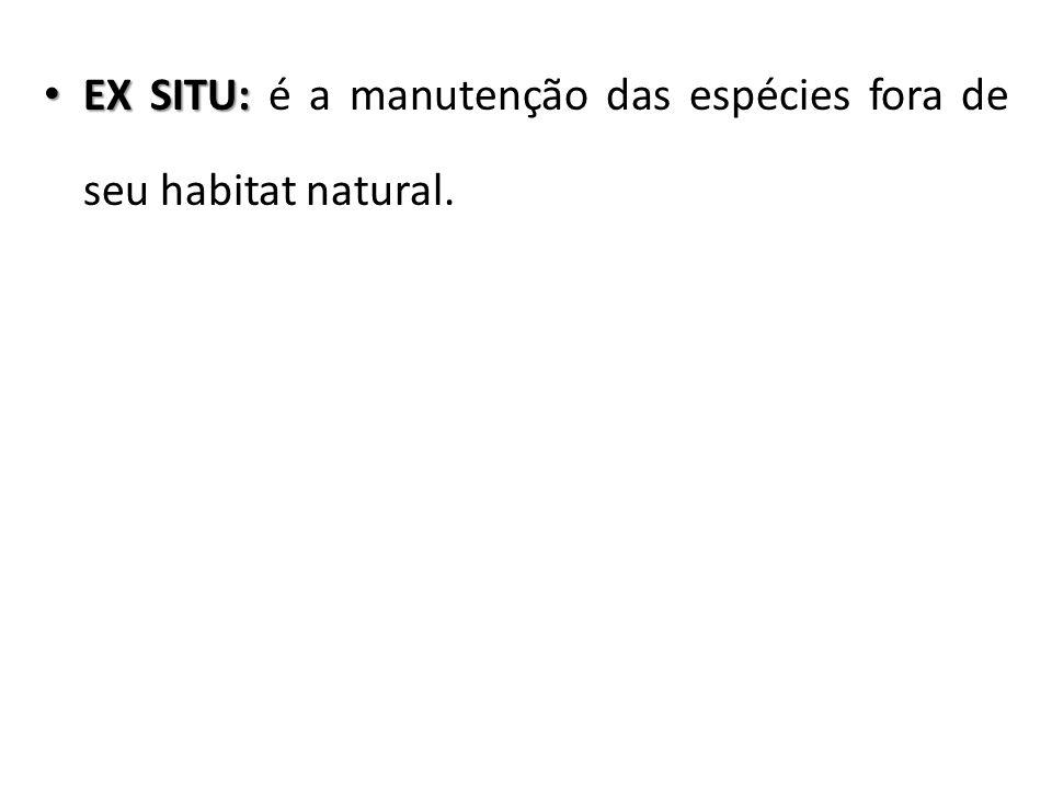 EX SITU: EX SITU: é a manutenção das espécies fora de seu habitat natural.