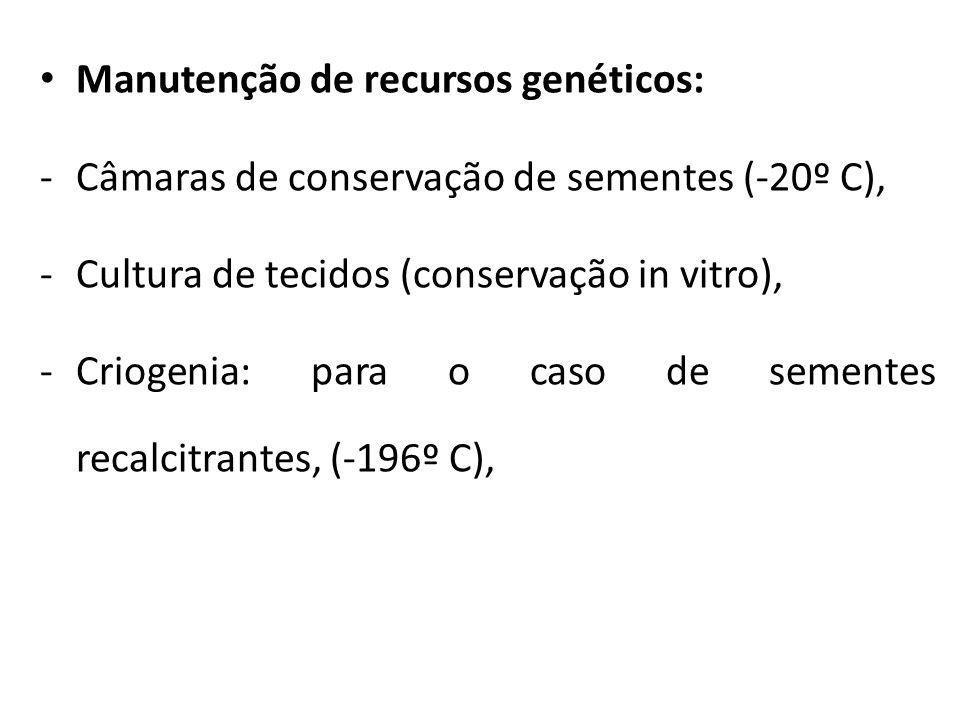 Manutenção de recursos genéticos: -Câmaras de conservação de sementes (-20º C), -Cultura de tecidos (conservação in vitro), -Criogenia: para o caso de