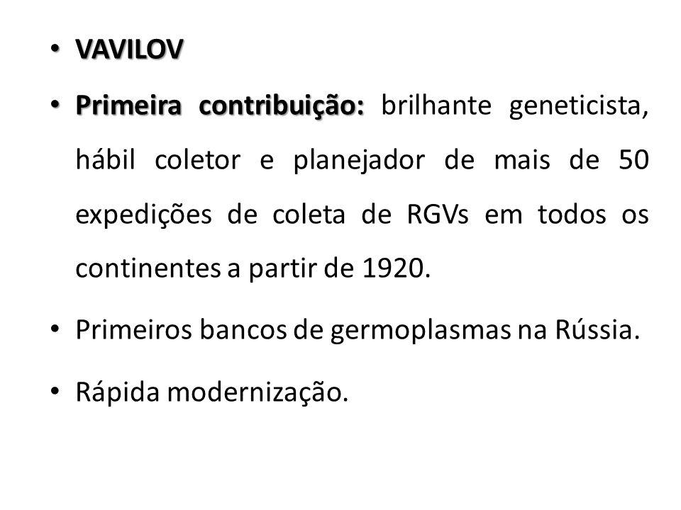 VAVILOV VAVILOV Primeira contribuição: Primeira contribuição: brilhante geneticista, hábil coletor e planejador de mais de 50 expedições de coleta de