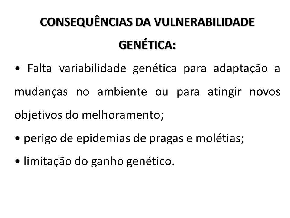 CONSEQUÊNCIAS DA VULNERABILIDADE GENÉTICA: Falta variabilidade genética para adaptação a mudanças no ambiente ou para atingir novos objetivos do melho