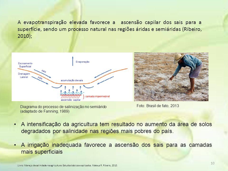 A evapotranspiração elevada favorece a ascensão capilar dos sais para a superfície, sendo um processo natural nas regiões áridas e semiáridas (Ribeiro