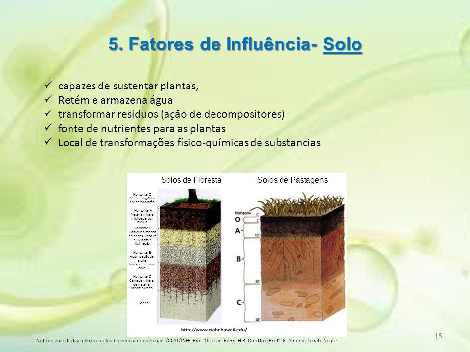 5. Fatores de Influência- Solo capazes de sustentar plantas, Retém e armazena água transformar resíduos (ação de decompositores) fonte de nutrientes p