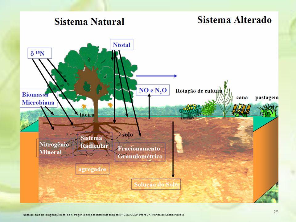 25 Nota de aula de biogeoquímica do nitrogênio em ecossistemas tropicais – CENA/USP. Profª Dr. Marisa de Cássia Piccolo