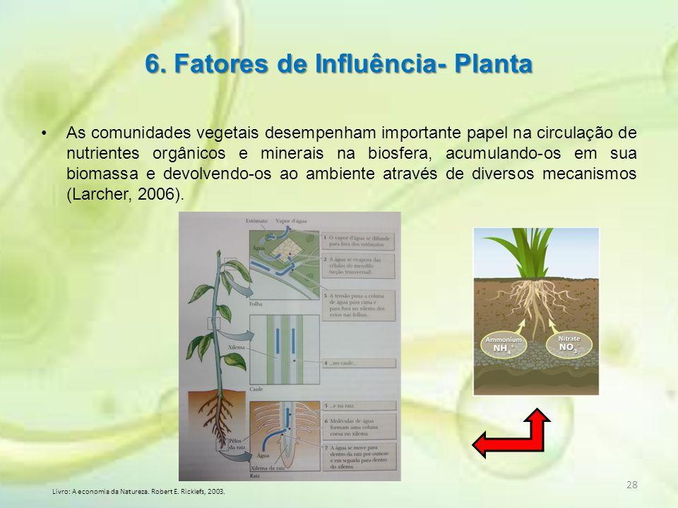As comunidades vegetais desempenham importante papel na circulação de nutrientes orgânicos e minerais na biosfera, acumulando-os em sua biomassa e dev