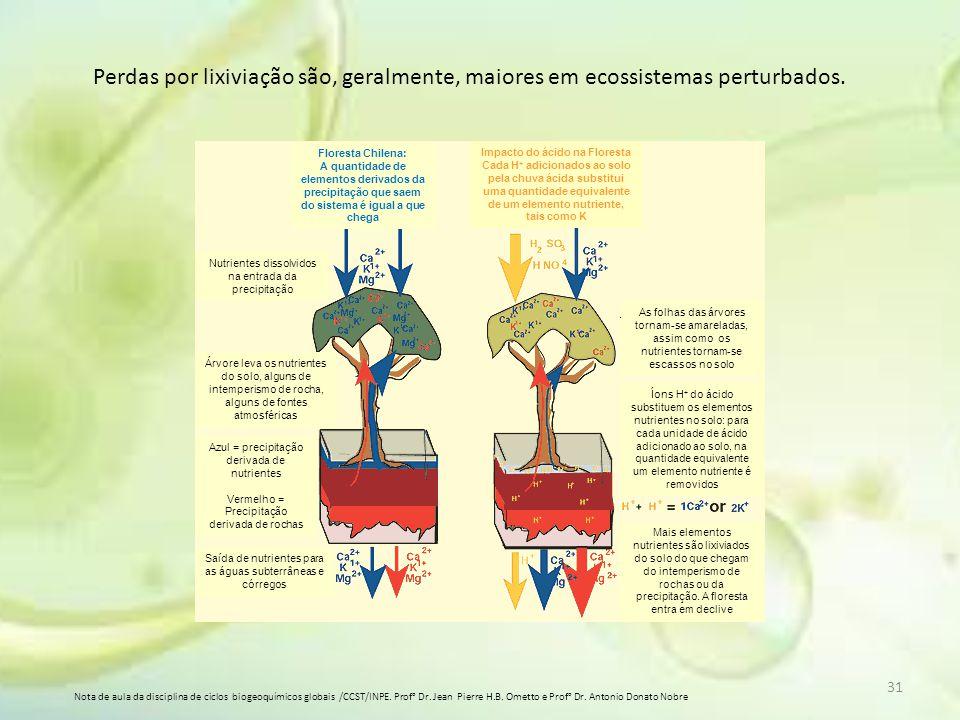 31 Perdas por lixiviação são, geralmente, maiores em ecossistemas perturbados. Nota de aula da disciplina de ciclos biogeoquímicos globais /CCST/INPE.