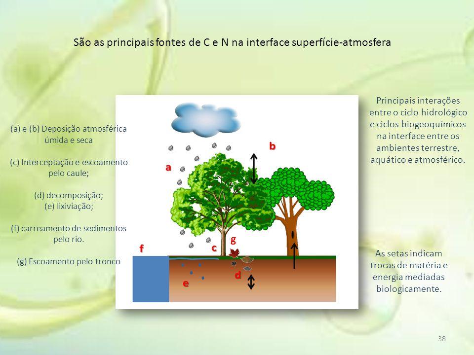 38 São as principais fontes de C e N na interface superfície-atmosfera (a) e (b) Deposição atmosférica úmida e seca (c) Interceptação e escoamento pel