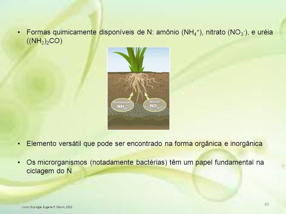 40 Formas quimicamente disponíveis de N: amônio (NH 4 + ), nitrato (NO 3 - ), e uréia ((NH 2 ) 2 CO) Elemento versátil que pode ser encontrado na form