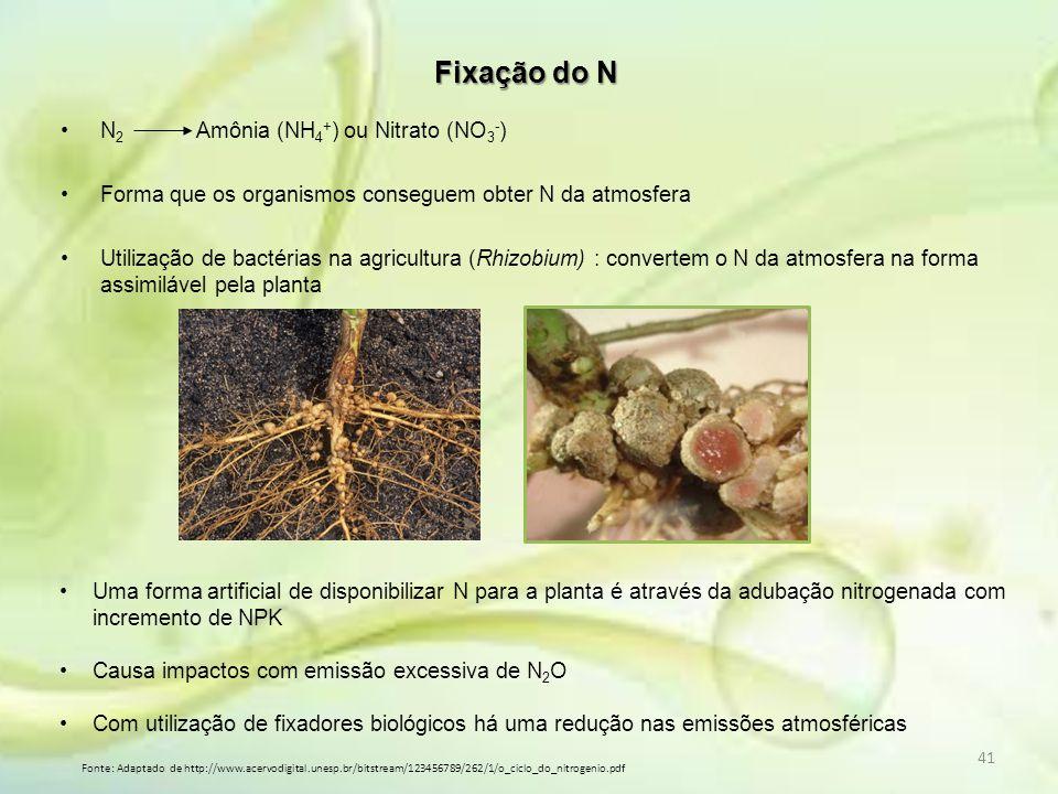 41 N 2 Amônia (NH 4 + ) ou Nitrato (NO 3 - ) Forma que os organismos conseguem obter N da atmosfera Utilização de bactérias na agricultura (Rhizobium)
