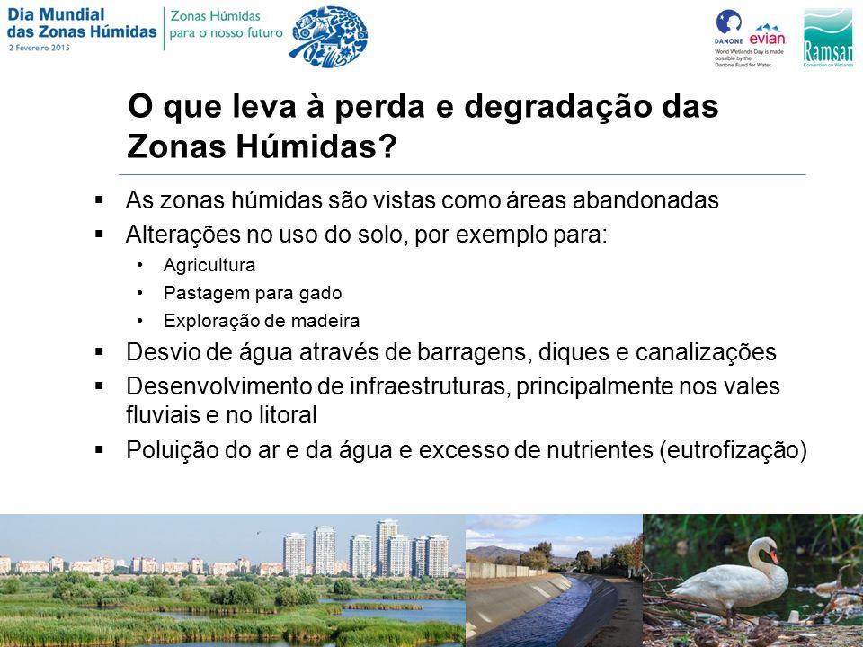 O que leva à perda e degradação das Zonas Húmidas.