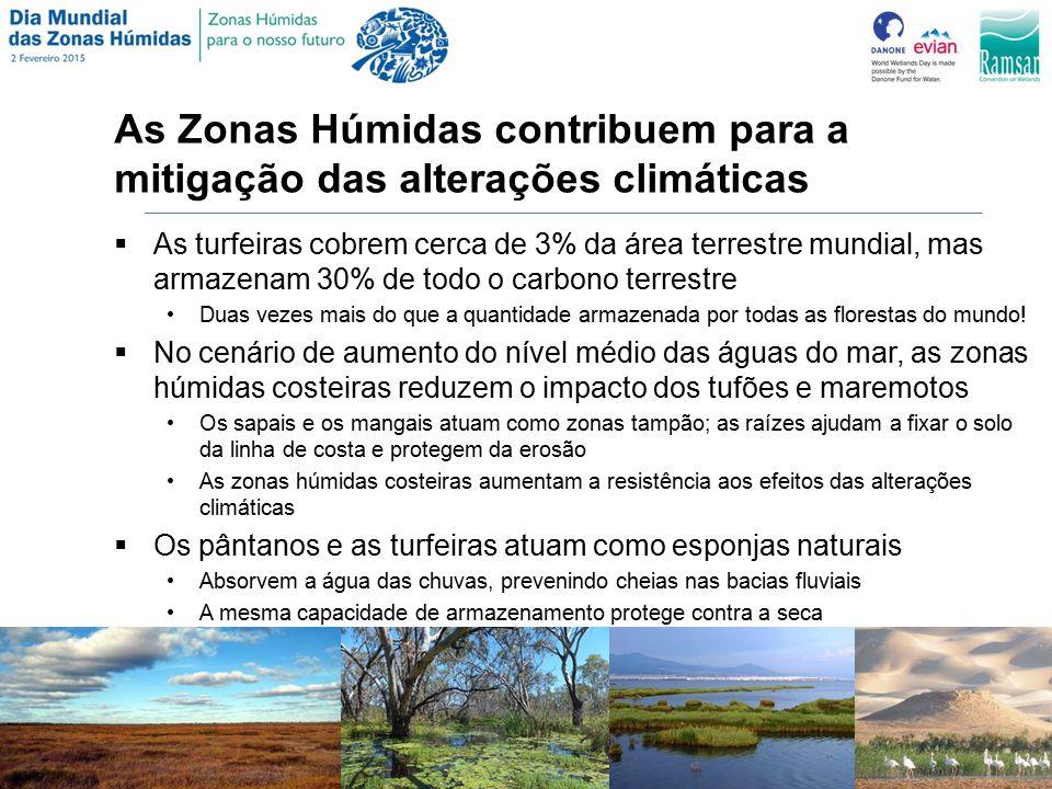 As Zonas Húmidas contribuem para a mitigação das alterações climáticas  As turfeiras cobrem cerca de 3% da área terrestre mundial, mas armazenam 30% de todo o carbono terrestre Duas vezes mais do que a quantidade armazenada por todas as florestas do mundo.