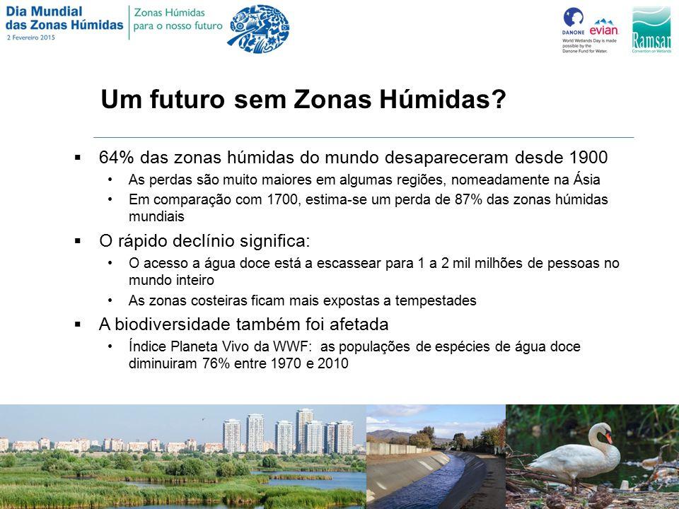 Um futuro sem Zonas Húmidas.