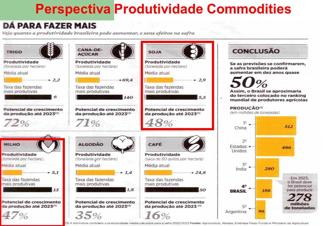 15 Perspectiva Produtividade Commodities