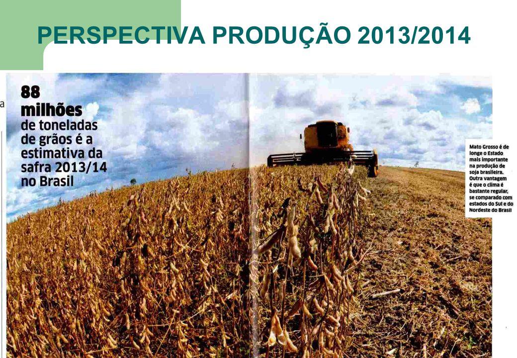 17 PERSPECTIVA PRODUÇÃO 2013/2014