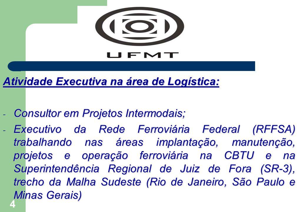 4 Atividade Executiva na área de Logística: - Consultor em Projetos Intermodais; - Executivo da Rede Ferroviária Federal (RFFSA) trabalhando nas áreas