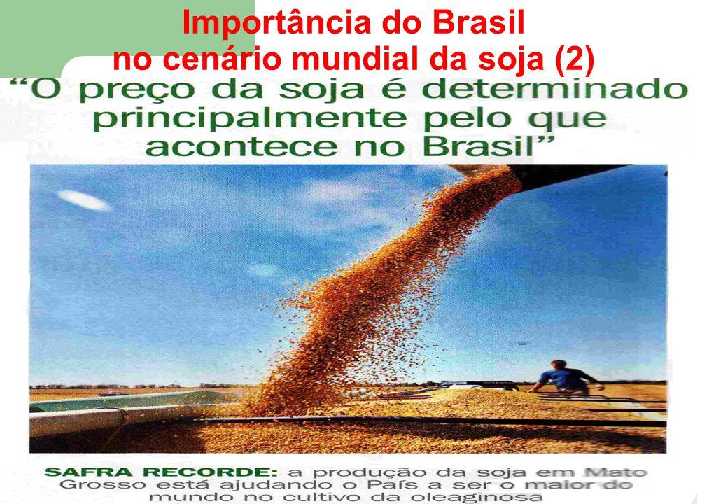 Importância do Brasil no cenário mundial da soja (2) 93