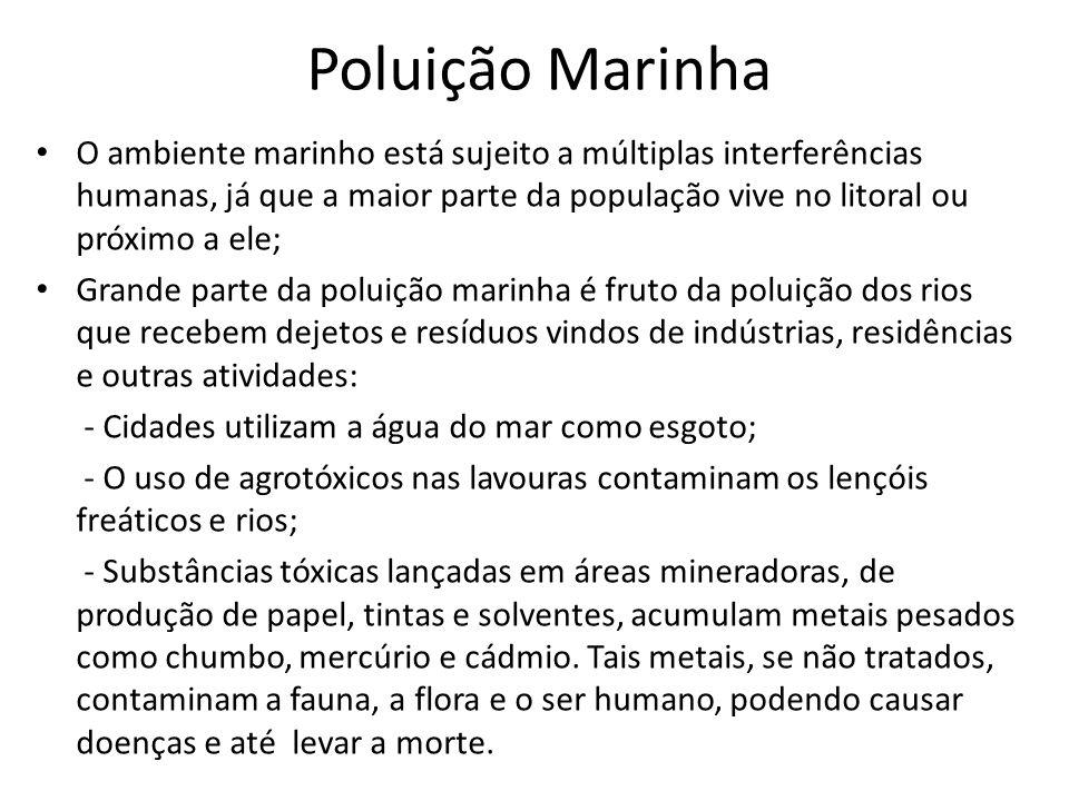 Poluição Marinha O ambiente marinho está sujeito a múltiplas interferências humanas, já que a maior parte da população vive no litoral ou próximo a el